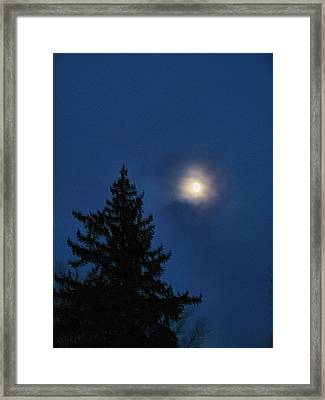 Moon Beyond The Spruce Framed Print