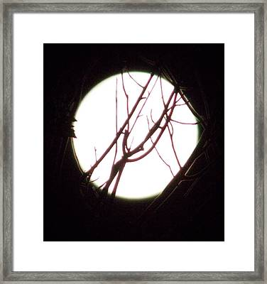 Moonshine 5 Framed Print