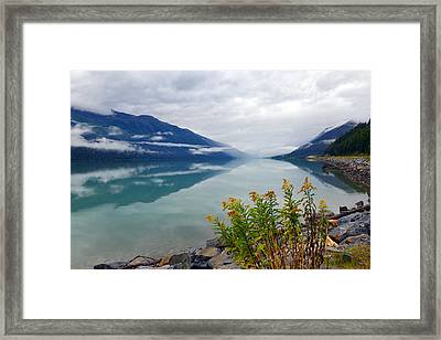 Moose Lake Framed Print by Yue Wang