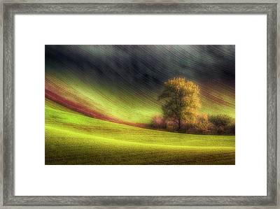 Moravian Fields Framed Print