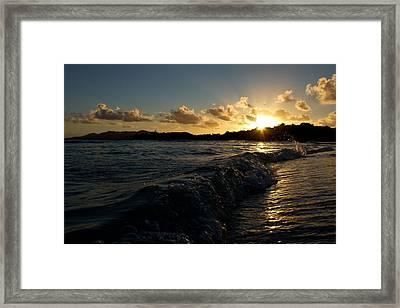 Morning Dip 2 Framed Print