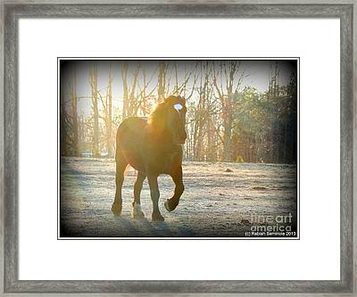 Morning Frost Framed Print