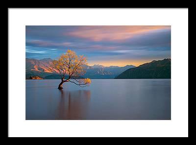 New Zealand Framed Prints