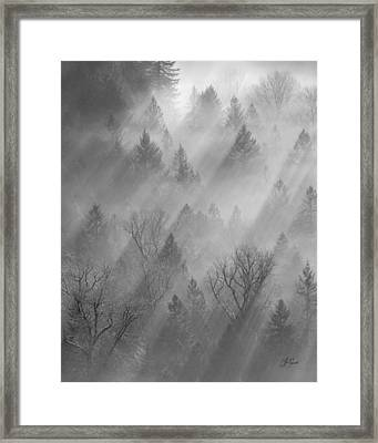 Morning Light -vertical Framed Print by Lori Grimmett