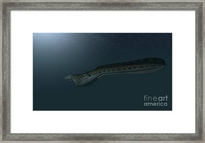 Mosasaur Swimming In Prehistoric Waters Framed Print by Kostyantyn Ivanyshen