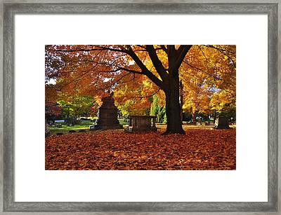 Mount Auburn Foliage Framed Print