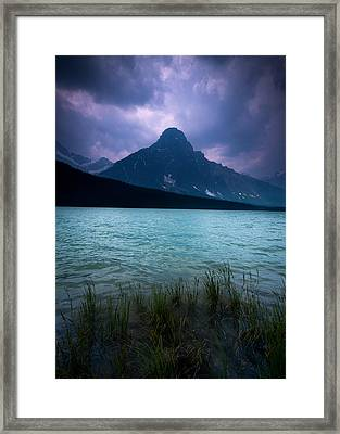 Mount Chephren Framed Print by Cale Best
