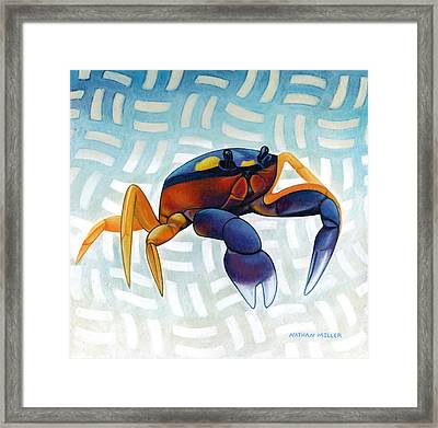 Mouthless Crab Framed Print by Nathan Miller