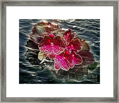 Moving Forward Framed Print