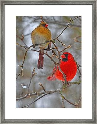 Mr. And Mrs. Framed Print by Larry Bishop