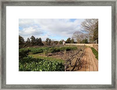 Mt Vernon - 01131 Framed Print