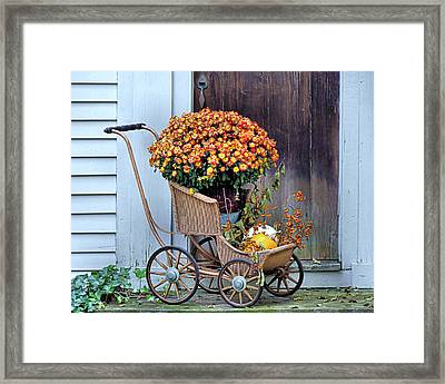 Mums In A Buggy Framed Print by Janice Drew