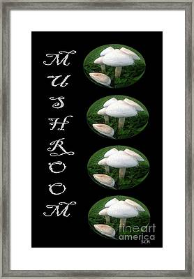 Framed Print featuring the photograph Mushroom Art Collection 1 By Saribelle Rodriguez by Saribelle Rodriguez