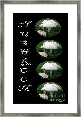 Mushroom Art Collection 1 By Saribelle Rodriguez Framed Print by Saribelle Rodriguez