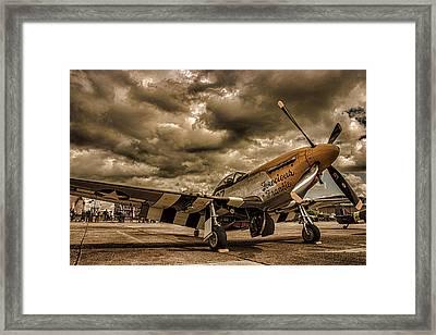 Mustang Framed Print by Martin Newman