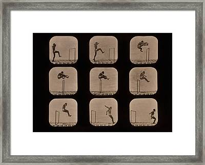 Muybridge Motion Study, 1870s Framed Print by Science Photo Library