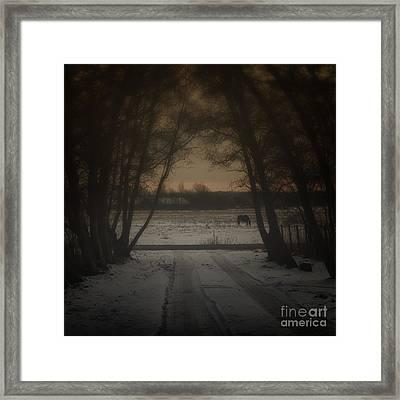 My Dark Forest Framed Print by Stelios Kleanthous
