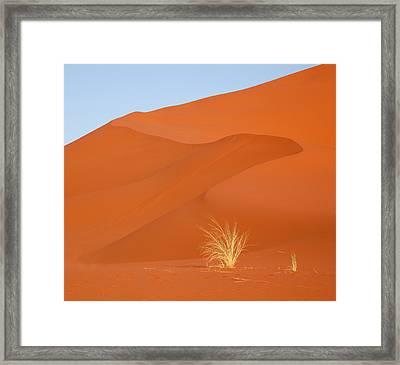 Namibia, Namib-naukluft Park Framed Print