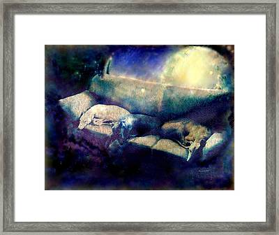 Nap Time Dreams Framed Print