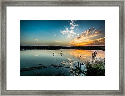 Natchez State Park Framed Print by Michael Chapman