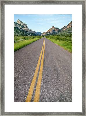 National Forest Road Framed Print