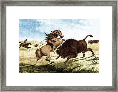 Native American Indian Buffalo Hunting Framed Print by Photo Researchers