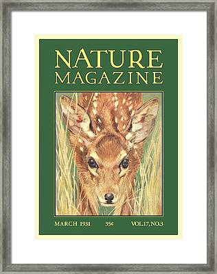 Nature Magazine Framed Print by Gary Grayson