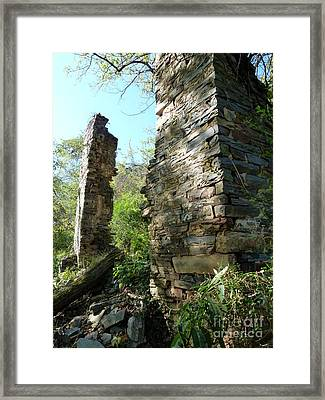 Framed Print featuring the photograph Nature's Door by Jane Ford