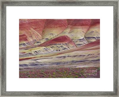 John Day Fossil Beds Painted Hills Framed Print by Michele Penner