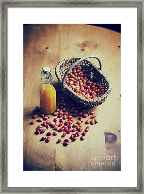 Natures Harvest Framed Print by Tim Gainey
