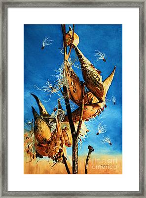 Nature's Launch Pad Framed Print