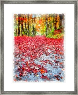Nature's Red Carpet Framed Print by Edward Fielding