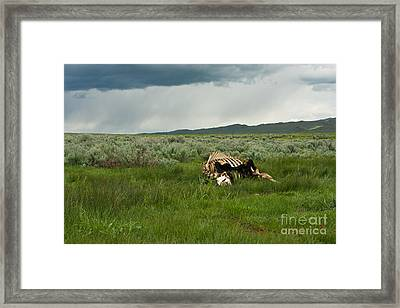 Nature's Storms Framed Print by Birches Photography