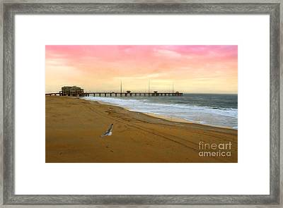 Natures Wonders Framed Print by Raymond Earley