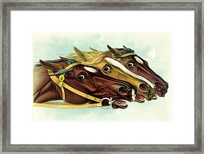 Neck And Neck Framed Print by Gary Grayson