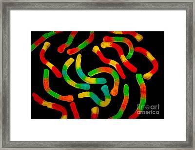 Neon Gummy Worms Framed Print