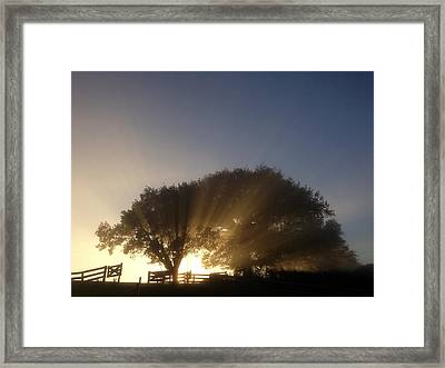 New Beginning Framed Print by Les Cunliffe