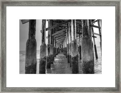 Newport Beach Pier Framed Print