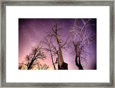 1 Night To Day Framed Print by James BO  Insogna