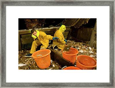 Night Trawler Framed Print by Andrew Wheeler