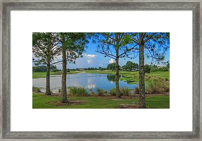 Tee Time Framed Print