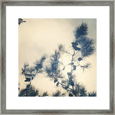No Title Framed Print by Greetje Kamps