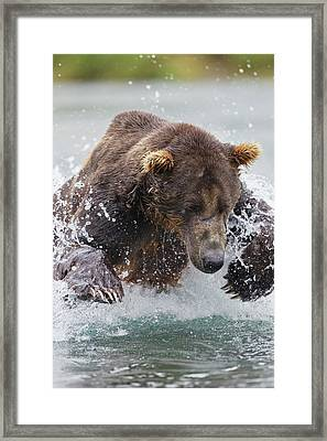 North America, Usa, Alaska, Geographic Framed Print by Joe and Mary Ann Mcdonald
