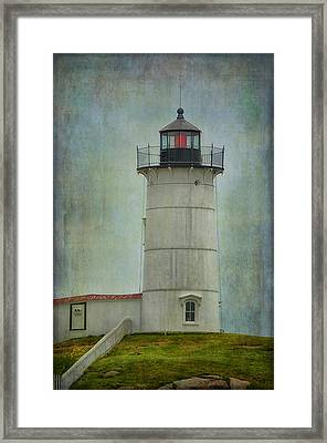 Nubble Framed Print by Tricia Marchlik