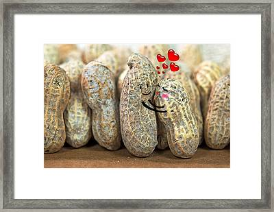 Nuts About You Framed Print by Maria Dryfhout