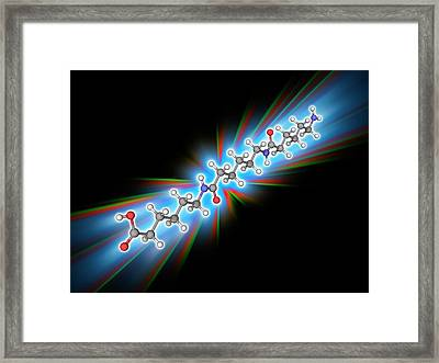 Nylon 6 Polymer Molecule Framed Print by Laguna Design/science Photo Library