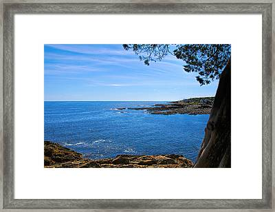 Oarweed Cove Framed Print