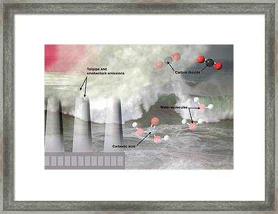 Ocean Acidification  Framed Print by Carol & Mike Werner