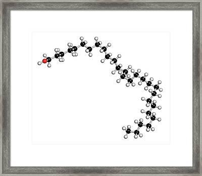 Octacosanol Plant Wax Component Molecule Framed Print by Molekuul
