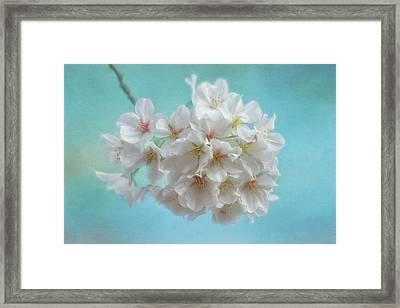 Ode To Spring Framed Print by Kim Hojnacki